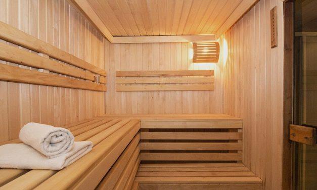 Saunabau Ungarn Preise